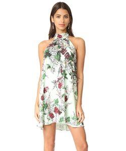 Haute Hippie | Платье Morrison