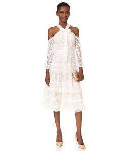 Needle & Thread | Платье Primrose