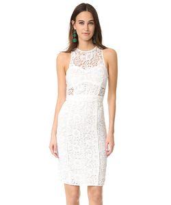 LIKELY | Платье Avenell
