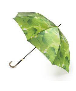 Henry Backer | Зонт-Трость Автомат Летние Листья