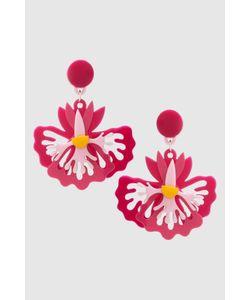 Yazbukey | Клипсы Orchid