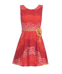 Rinascimento | Кружевное Платье С Поясом 164523
