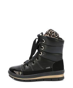 Jog Dog | Текстильные Ботинки На Шнуровке
