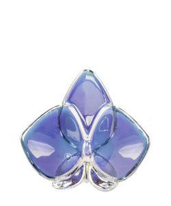 Baccarat | Орхидея Голубая Orchid