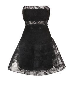 Basix Black Label | Кружевное Платье-Бюстье С Пышной Юбкой