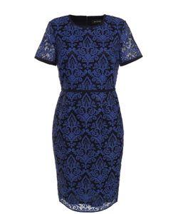 St. John | Кружевное Приталенное Платье-Миди