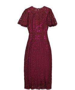 Dolce & Gabbana | Кружевно Приталенное Платье С Коротким Рукавом