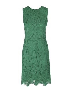 Emilio Pucci | Приталенное Кружевное Платье Без Рукавов С Круглым Вырезом