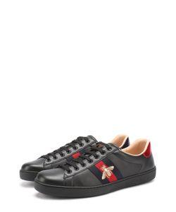Gucci | Кожаные Кеды Ace С Контрастной Отделкой