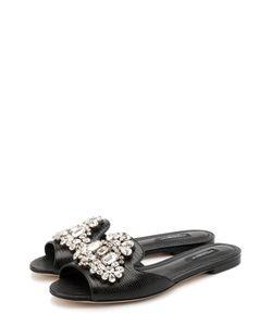 Dolce & Gabbana | Кожаные Сабо С Кристаллами