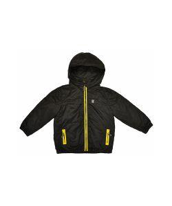 BORRELLI | Куртка