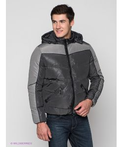 Alf Sport   Куртки