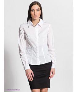Fracomina   Рубашки