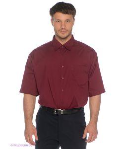 Davani   Рубашки
