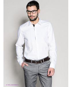 18CRR81 CERRUTI | Рубашки