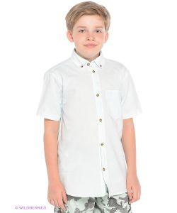 Orby | Рубашки