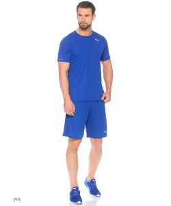 Puma   Шорты It Evotrg Shorts Touch