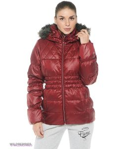 Puma | Куртки
