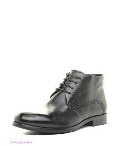 Vitacci | Ботинки