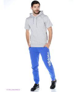 Adidas | Свитшоты