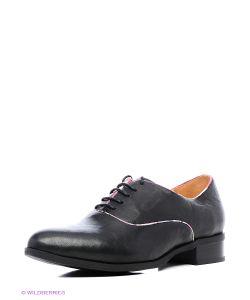 Shoe the Bear   Туфли