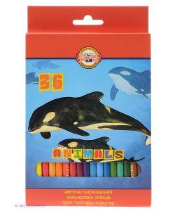 Koh-i-Noor | Набор Карандашей Животные 36 Цветов