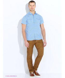 Solid | Рубашки