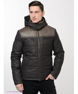 Absolutex | Куртки