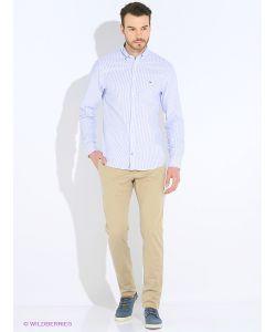 Tommy Hilfiger | Рубашки