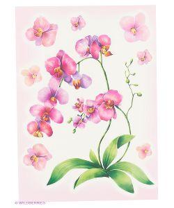 DECORETTO | Акварельна Орхиде