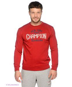 Champion | Джемперы