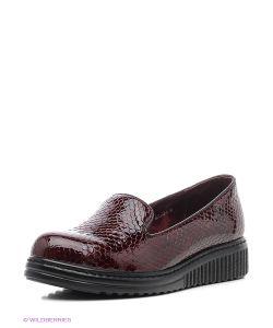 Covani | Туфли