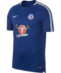 Nike | Футболка Cfc M Nk Brt Sqd Top Ss