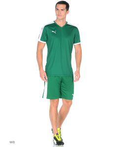 Puma | Шорты Игровые Pitch Shorts Withinnerbrief