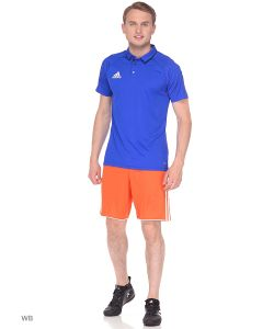 Adidas   Спортивные Шорты