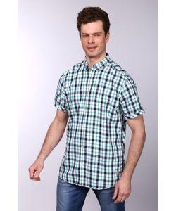 TOM TAILOR | Рубашки С Коротким Рукавом