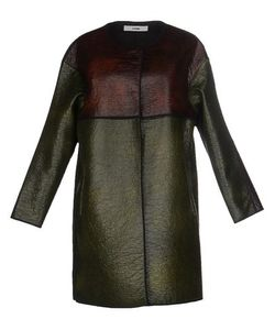 Purim   Легкое Пальто