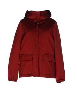Strenesse | Куртка