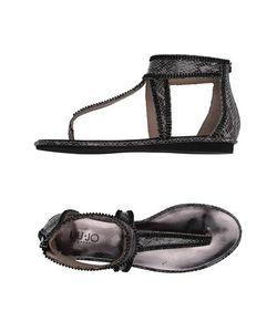 Liu •Jo Shoes | Вьетнамки
