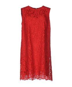 Dolce & Gabbana   Короткое Платье