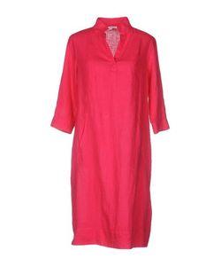 Signorelli   Платье До Колена