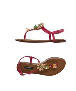 Dolce & Gabbana   Вьетнамки