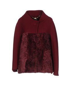 Clips | Куртка