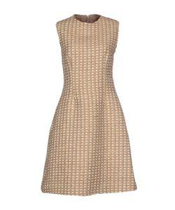 Antonello Serio | Платье До Колена