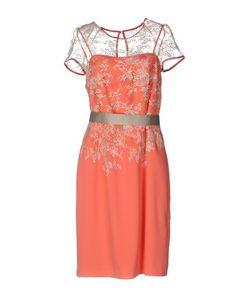 Linea Raffaelli | Платье До Колена