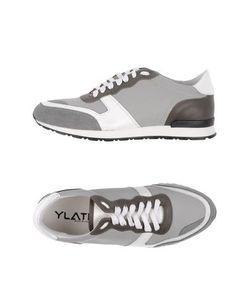 Ylati | Низкие Кеды И Кроссовки