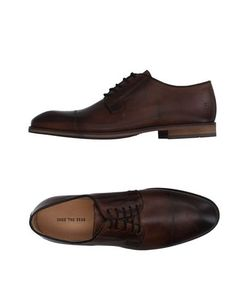 Shoe the Bear | Обувь На Шнурках