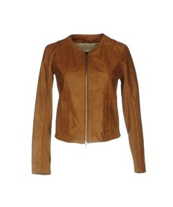 Kaos | Куртка