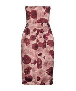 ERIKA CAVALLINI SEMICOUTURE | Платье До Колена