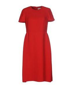 Valentino | Платье До Колена
